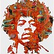 http://www.cuonet.com/data/apms/photo/he/hendrix74.jpg